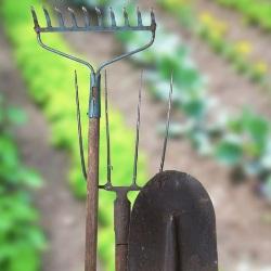 narzędzie do zwalczania chwastów
